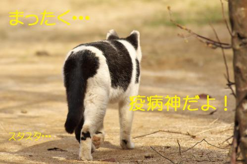 120_20130313215419.jpg