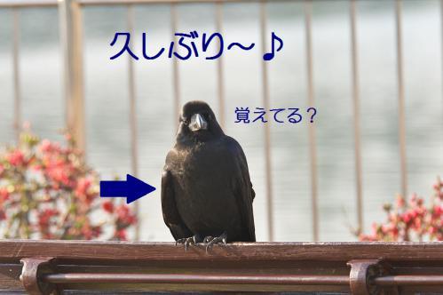 120_20130317212159.jpg