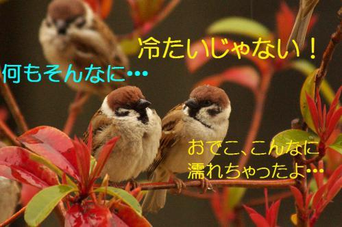 120_20130320211232.jpg