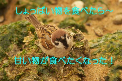 120_20130322231345.jpg