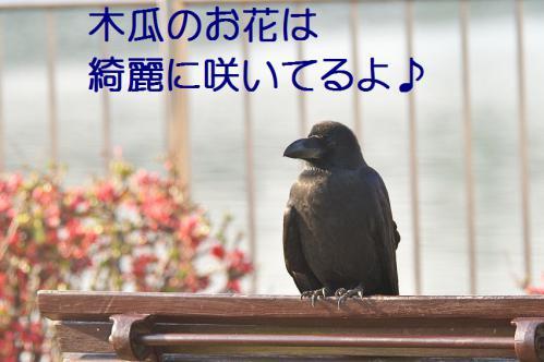 130_20130317212202.jpg