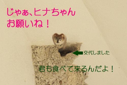 130_20130430194445.jpg