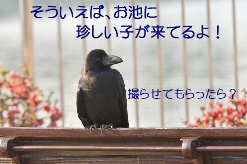 140_20130317212205.jpg