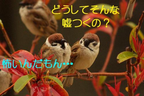 140_20130320211244.jpg
