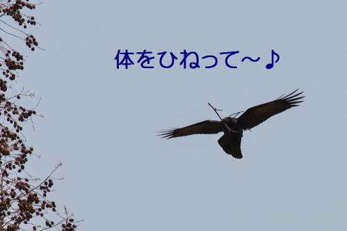 140_20130330215031.jpg