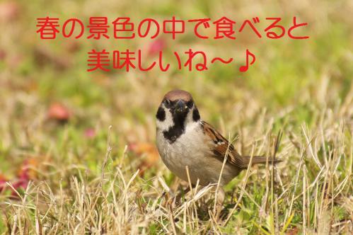 150_20130319203856.jpg