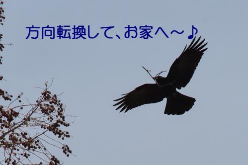 150_20130330215035.jpg