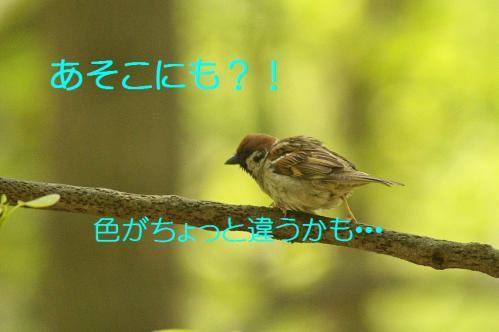 150_20130503222355.jpg