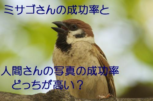 150_20130527215639.jpg