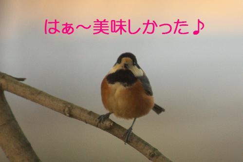 180_20130215211647.jpg