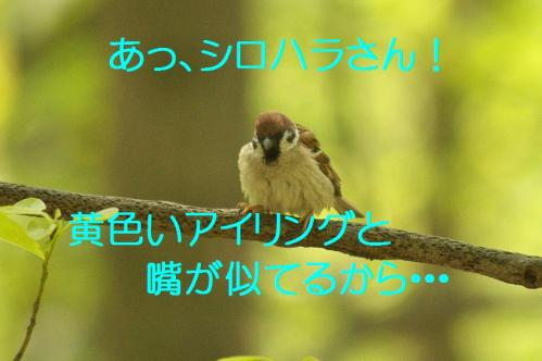 180_20130503222431.jpg