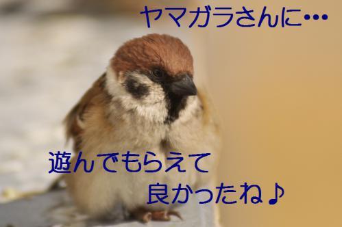 190_20130215211649.jpg
