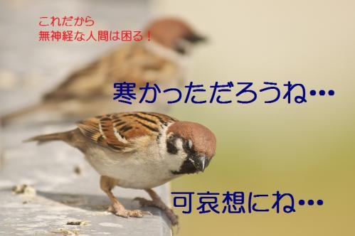 200_20130428200001.jpg