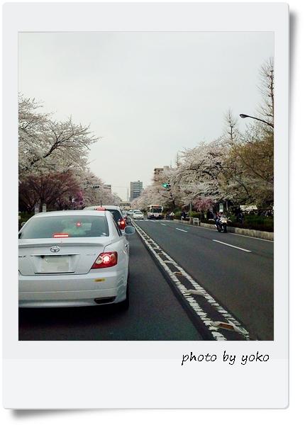 2013kunitachi.jpg