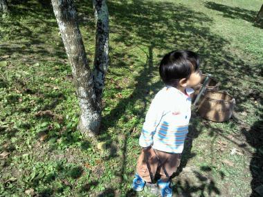 Picture101413_114740_convert_20131016233822.jpg