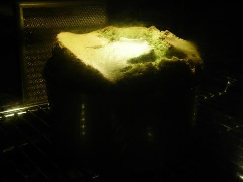 抹茶シフォンケーキ 焼成中