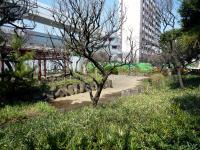 梅屋敷公園