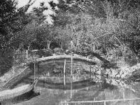 明治期の梅屋敷