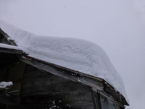 14 1/12 雪下ろし前