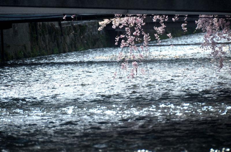 祇園2_1