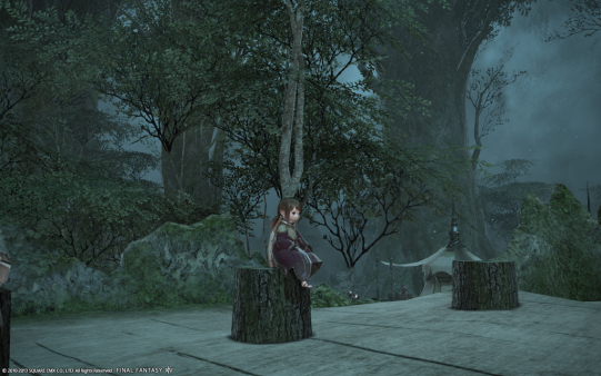 FF14_201310_040.png
