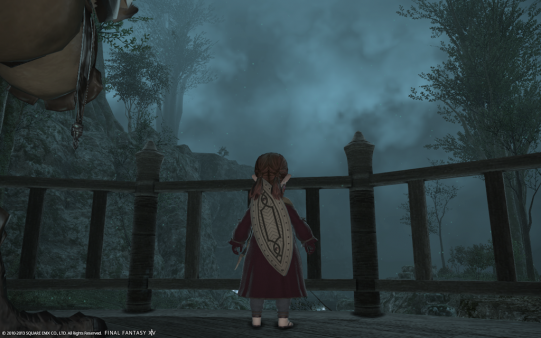 FF14_201310_041.png