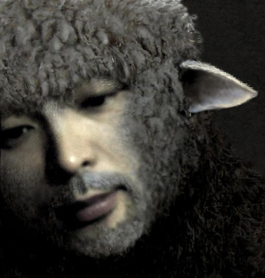 羊毛tacasi