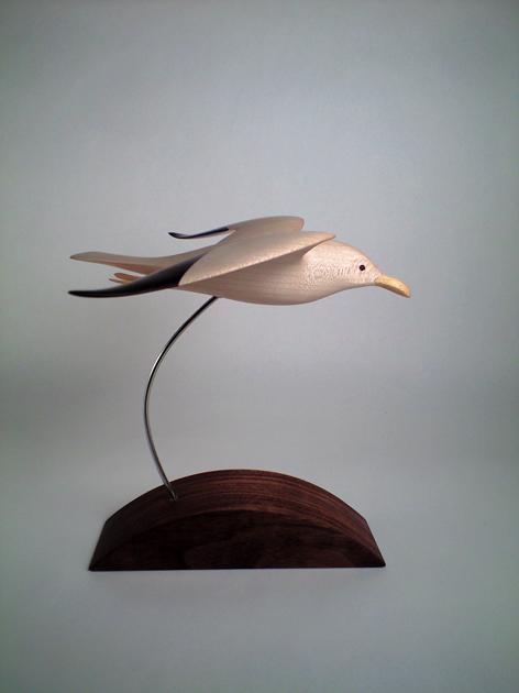 sycamoa seagull