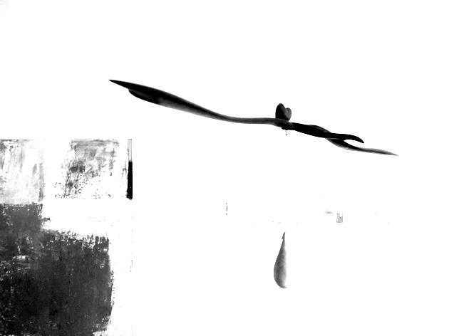 ryugallery-5.jpg