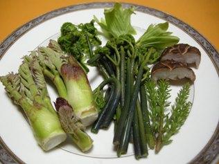 13.4.21 山菜