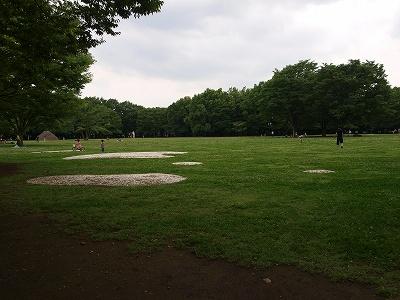 公園全景2