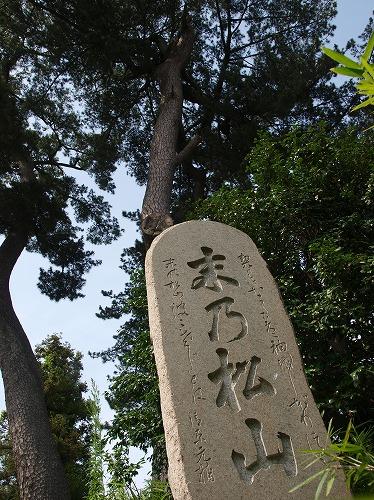 末の松山2