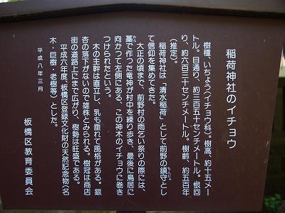 P5037435.jpg