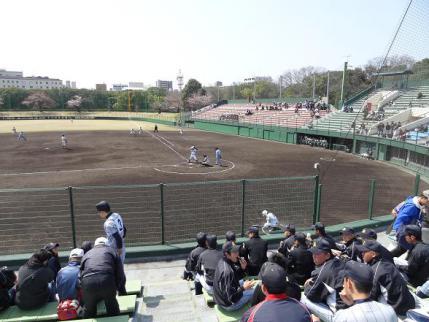 2013年3月30日明石公園①
