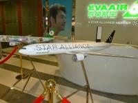 エバー航空台北営業所のスターアライアンス130904