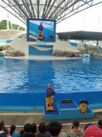 花蓮海洋公園イルカショーの前座ジャグラーとビジョン130919