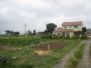 松野木167-3