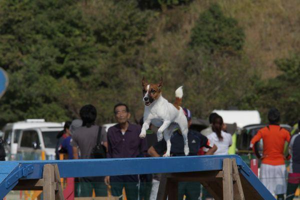 2013-10-20福岡クラブ3