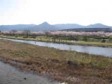 k-muromi-1.jpg