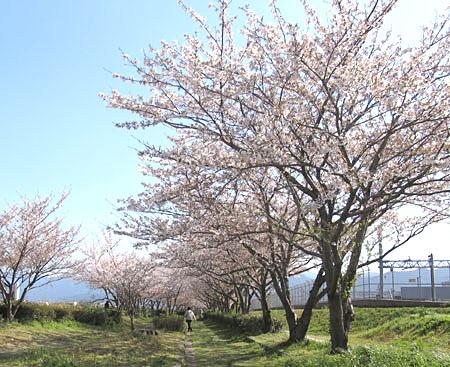 k-muromi-8.jpg