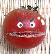 n-tomato-3.jpg
