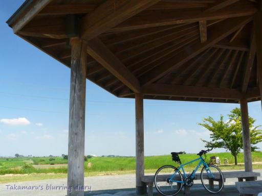 普段は自転車乗りの溜まり場になってます