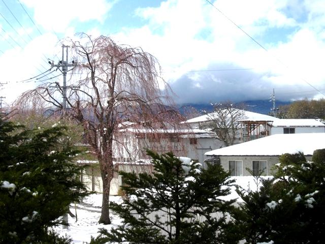4月の大雪3