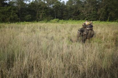 chitwan-nepal_14-11-08-0169.jpg