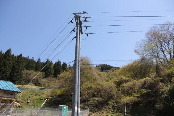 小里川発電所への送電線