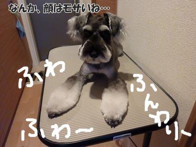 9_10+003_convert_20110910093944.jpg