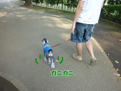 9_10+017_convert_20110910094148.jpg