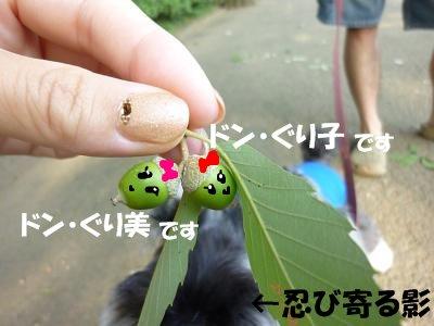 9_10+034_convert_20110910094956.jpg