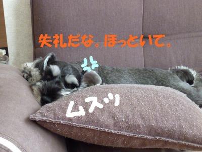 9_3+003_convert_20110907103946.jpg
