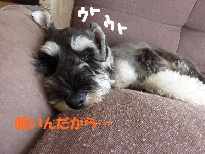9_3+006_convert_20110907104022.jpg